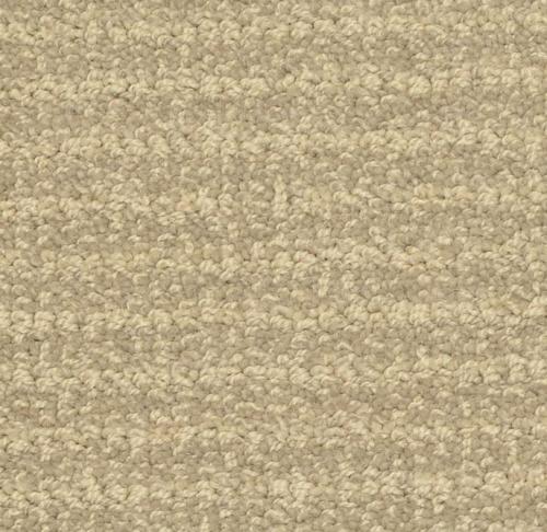 Masland Carpet Ansley Quarry Destin Elite Tile