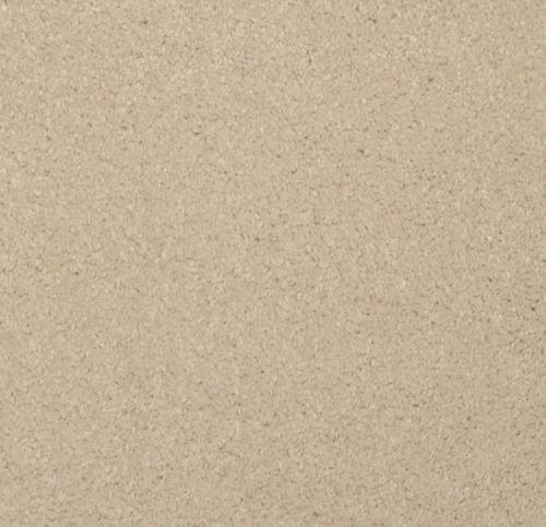 masland-carpet-softly-stated-top-shelf